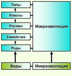 hello_html_44074231.jpg