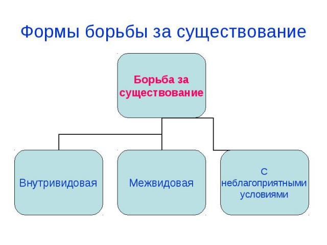 hello_html_8b60c00.jpg
