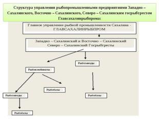 Структура управления рыбопромышленными предприятиями Западно – Сахалинского,