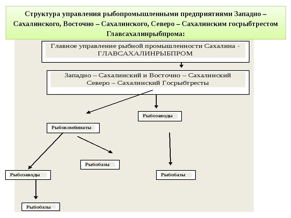 Структура управления рыбопромышленными предприятиями Западно – Сахалинского,...