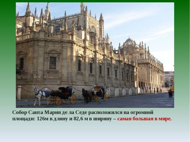 Собор Санта Мария де ла Седе расположился на огромной площади: 126м в длину и...