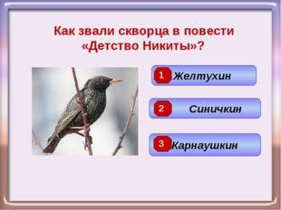 Как звали скворца в повести «Детство Никиты»? Синичкин Желтухин Карнаушкин 3