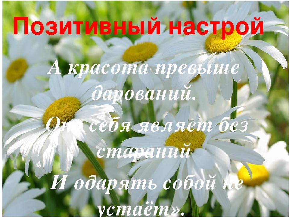 Позитивный настрой А красота превыше дарований. Она себя являет без стараний...