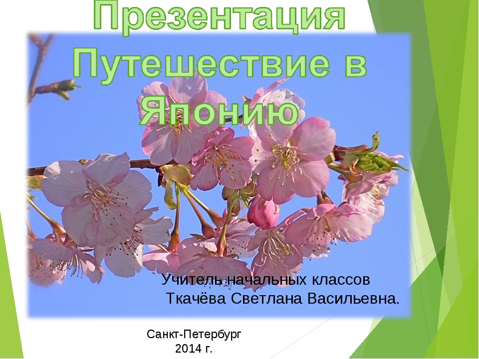 Учитель начальных классов Ткачёва Светлана Васильевна. Санкт-Петербург 2014 г.