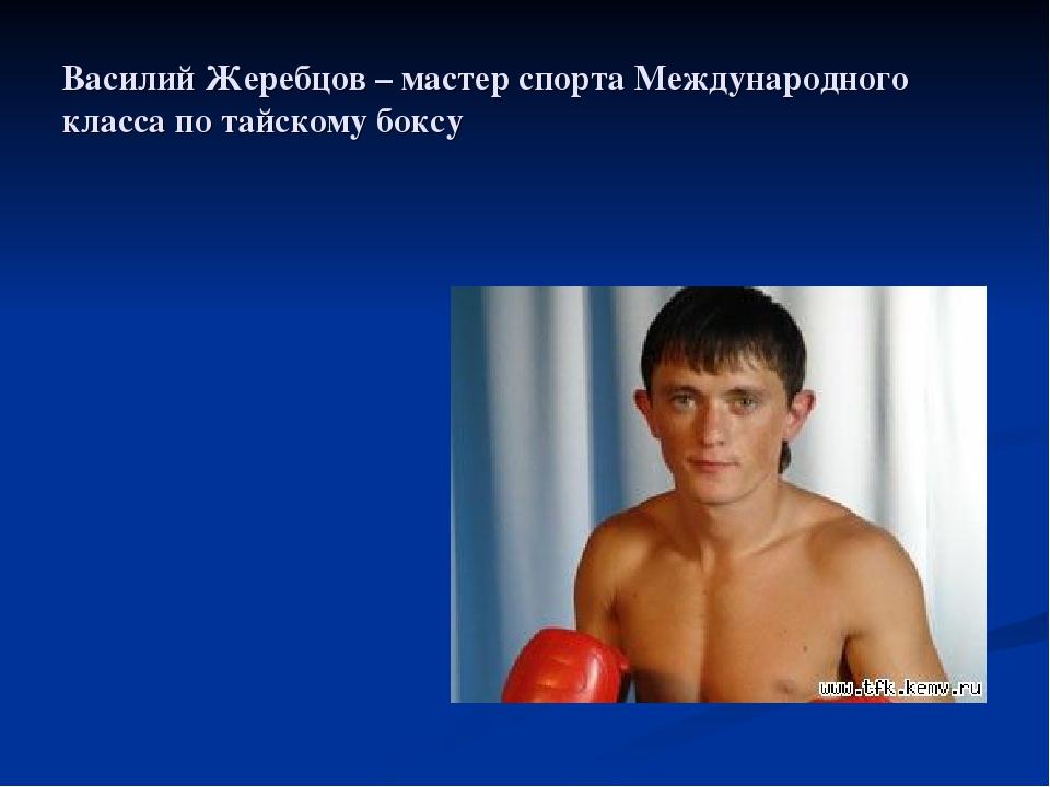 Василий Жеребцов – мастер спорта Международного класса по тайскому боксу