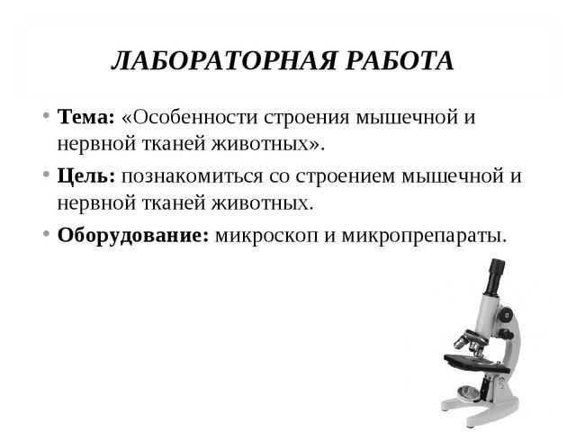 ЛАБОРАТОРНАЯ РАБОТА Тема: «Особенности строения мышечной и нервной тканей жив...