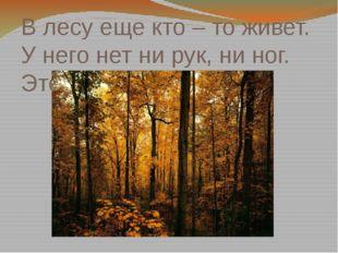 В лесу еще кто – то живет. У него нет ни рук, ни ног. Это эхо.