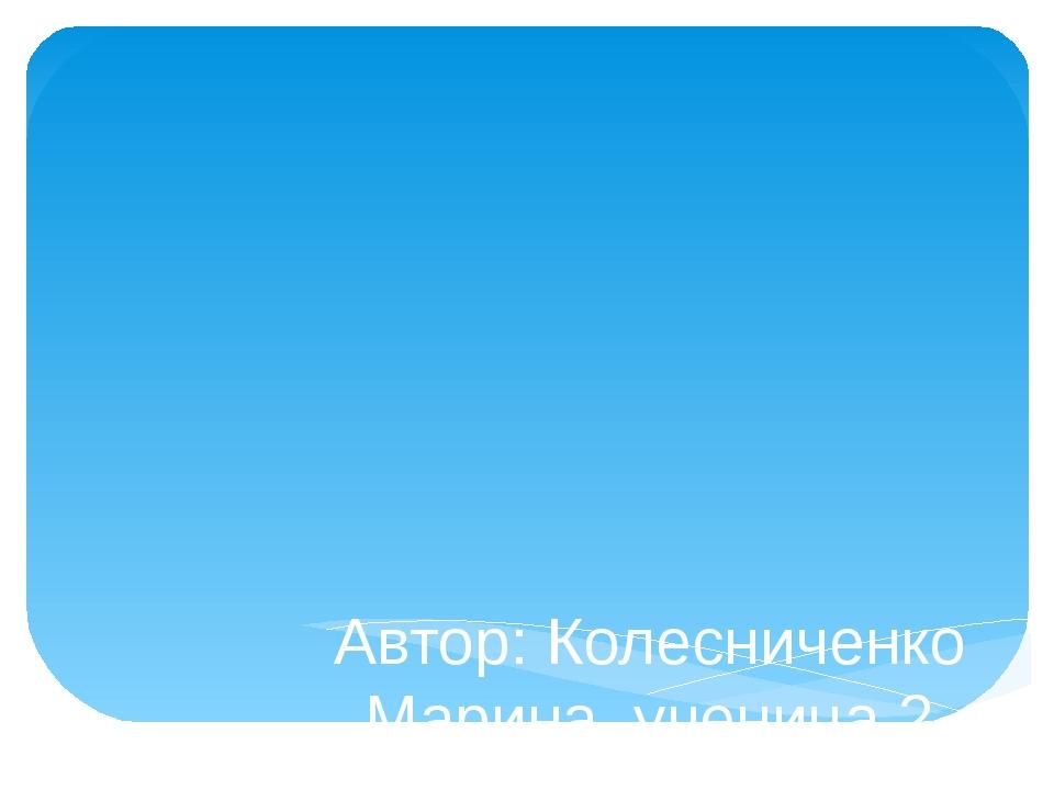 Проект  «Наши имена» Автор: Колесниченко Марина, ученица2 класса. Руководи...
