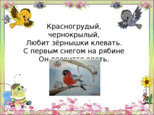 Красногрудый, чернокрылый, Любит зёрнышки клевать. С первым снегом на рябине
