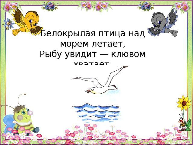 Белокрылая птица над морем летает, Рыбу увидит — клювом хватает.