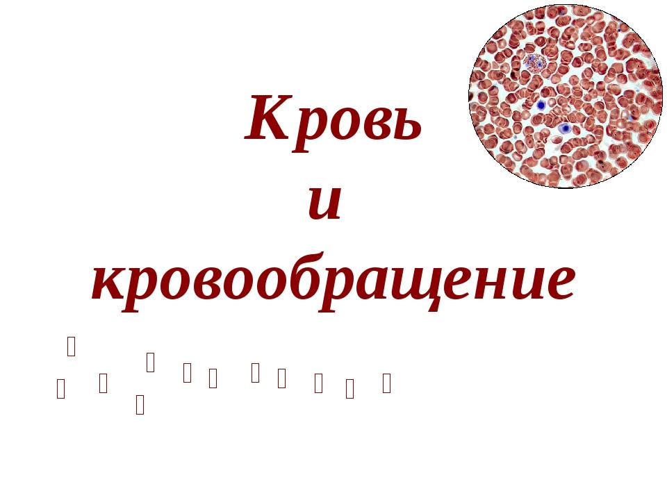 Кровь и кровообращение            