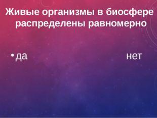 Какой цветок на Руси называют лоскутницей? Клевер василек ромашка мать-и-мачеха