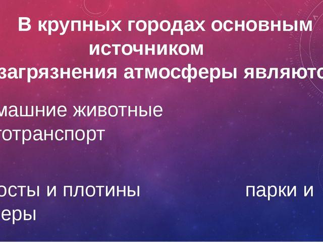 Какое дерево называют символом России? Иву Осину Березу Рябину