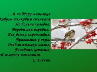 …А по двору метелица Ковром шелковым стелется Но больно холодна. Воробышки иг