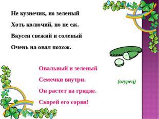 Не кузнечик, но зеленый Хоть колючий, но не еж. Вкусен свежий и соленый Очень