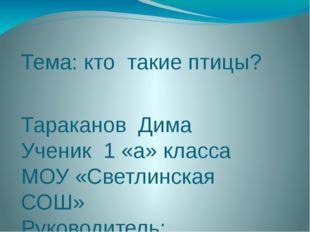 Тема: кто такие птицы? Тараканов Дима Ученик 1 «а» класса МОУ «Светлинская СО