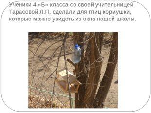Ученики 4 «Б» класса со своей учительницей Тарасовой Л.П. сделали для птиц ко