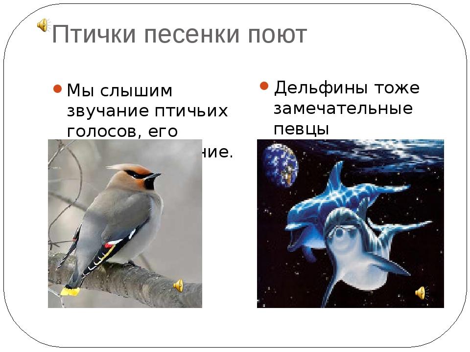 Птички песенки поют Мы слышим звучание птичьих голосов, его называют – пение....