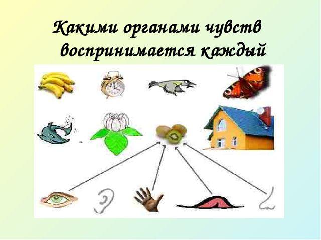 Какими органами чувств воспринимается каждый предмет?