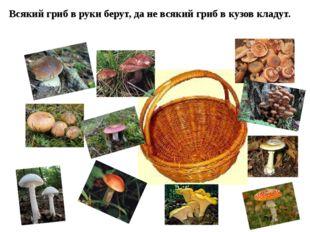 Всякий гриб в руки берут, да не всякий гриб в кузов кладут.