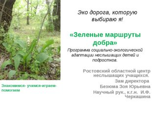 Эко дорога, которую выбираю я! «Зеленые маршруты добра» Программа социально-э