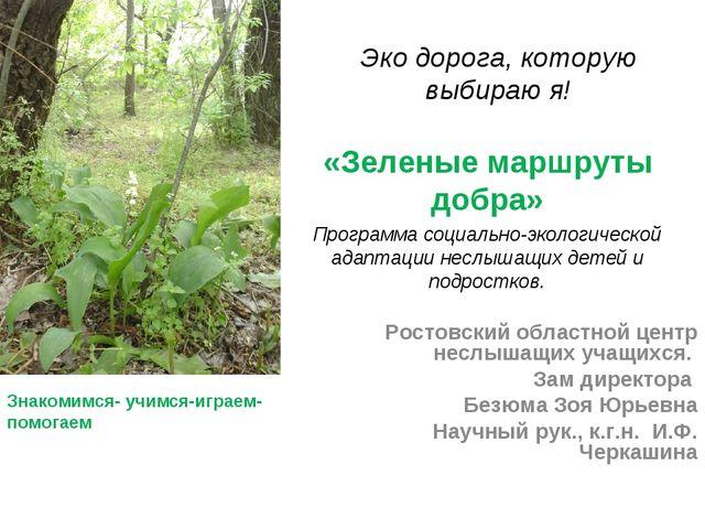 Эко дорога, которую выбираю я! «Зеленые маршруты добра» Программа социально-э...