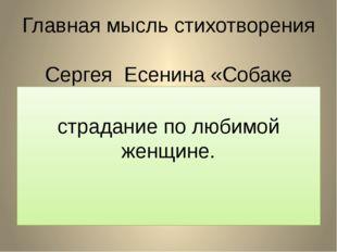 Главная мысль стихотворения Сергея Есенина «Собаке Качалова»:  страдание по
