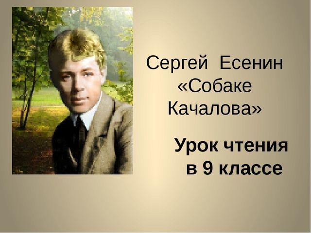 Сергей Есенин «Собаке Качалова» Урок чтения в 9 классе