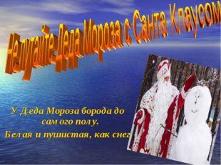У Деда Мороза борода до самого полу. Белая и пушистая, как снег