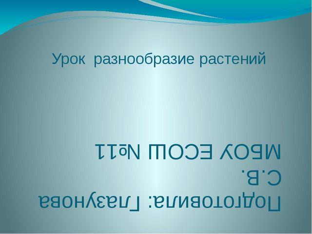 Урок разнообразие растений Подготовила: Глазунова С.В. МБОУ ЕСОШ №11
