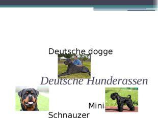 Deutsche Hunderassen Rottweiler Deutsche dogge Miniature Schnauzer
