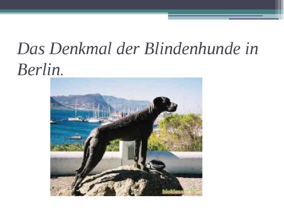 Das Denkmal der Blindenhunde in Berlin.