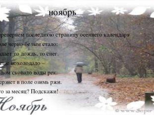 ноябрь Перевернем последнюю страницу осеннего календаря. Поле черно-белым ста