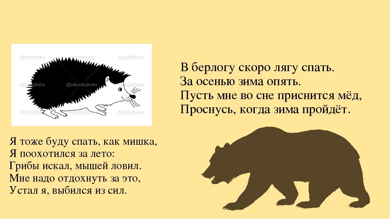 Я тоже буду спать, как мишка, Я поохотился за лето: Грибы искал, мышей ловил...