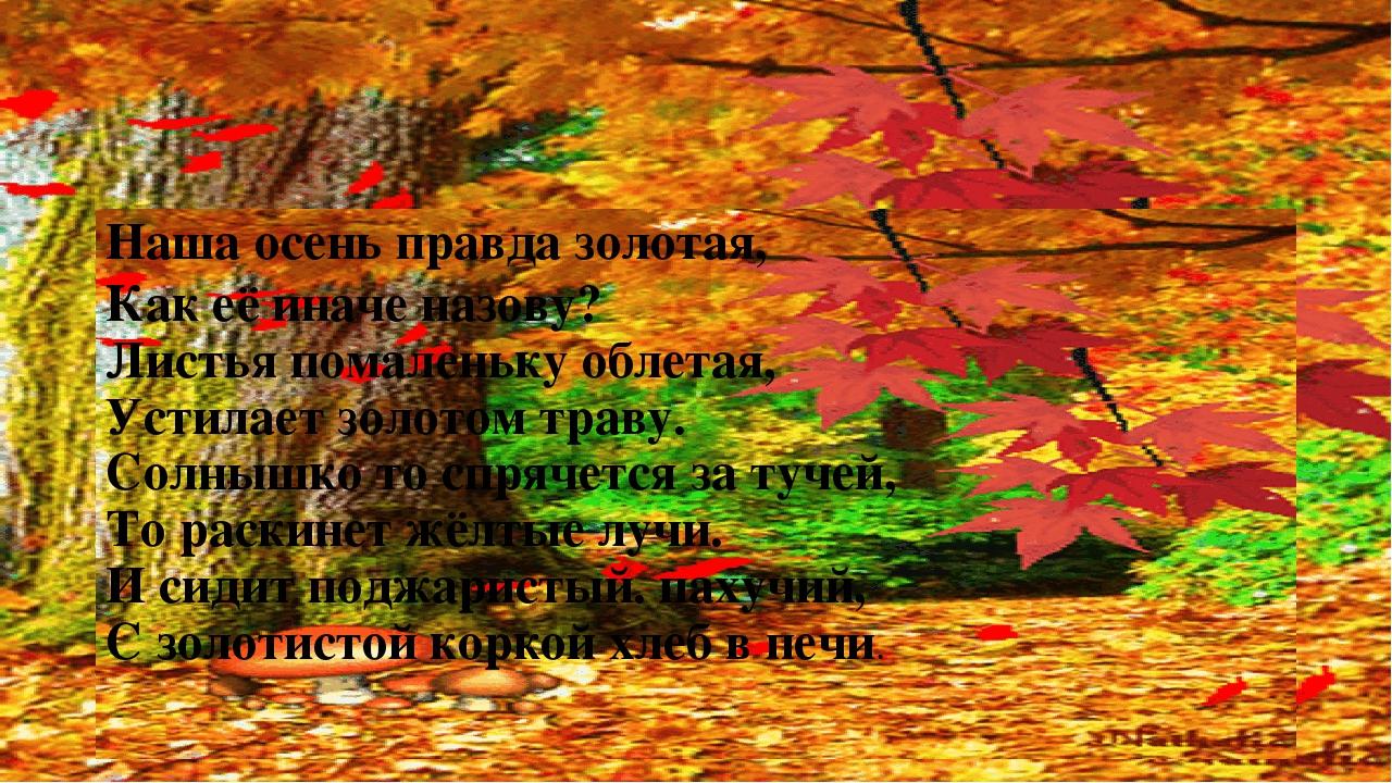 Наша осень правда золотая, Как её иначе назову? Листья помаленьку облетая, У...