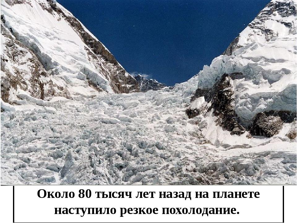 Около 80 тысяч лет назад на планете наступило резкое похолодание.