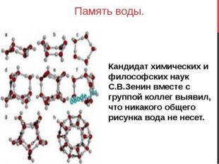 Память воды. Кандидат химических и философских наук С.В.Зенин вместе с группо