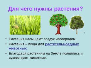 Для чего нужны растения? Растения насыщают воздух кислородом. Растения – пища