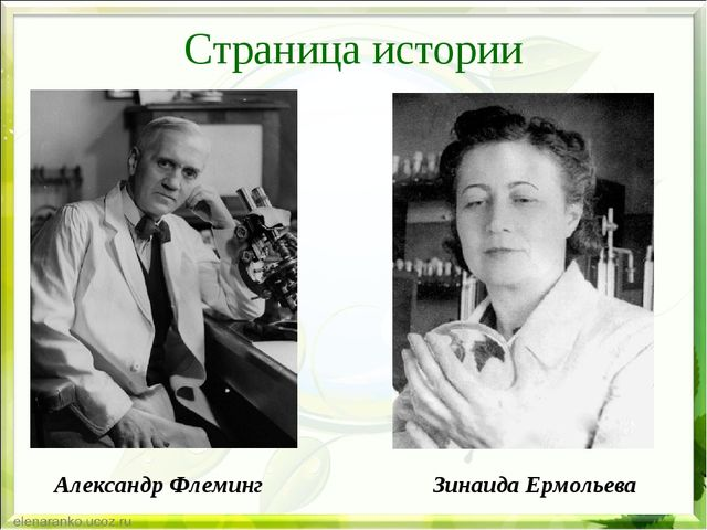 Страница истории Александр Флеминг Зинаида Ермольева