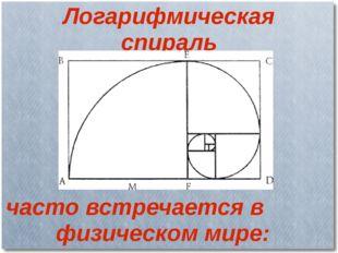 Логарифмическая спираль часто встречается в физическом мире: