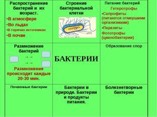 Распространение бактерий и их возраст. В атмосфере Во льдах В горячих источни