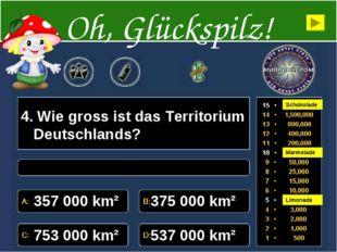 4. Wie gross ist das Territorium Deutschlands? 357000 km² 375000 km² 75300