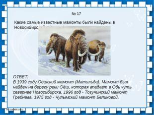 № 17 Какие самые известные мамонты были найдены в Новосибирской области? ОТВЕ