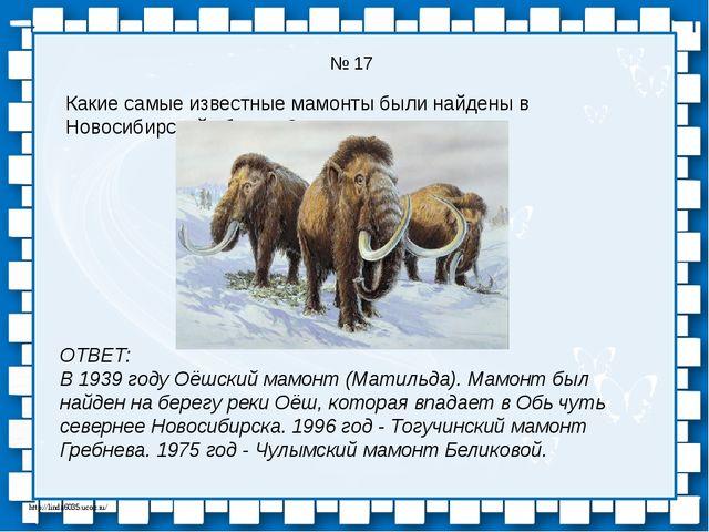 № 17 Какие самые известные мамонты были найдены в Новосибирской области? ОТВЕ...