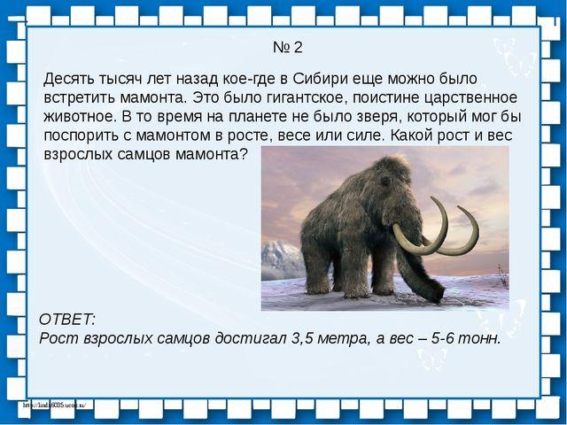 Десять тысяч лет назад кое-где в Сибири еще можно было встретить мамонта. Это...