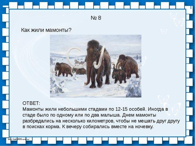 № 8 Как жили мамонты? ОТВЕТ: Мамонты жили небольшими стадами по 12-15 особей....