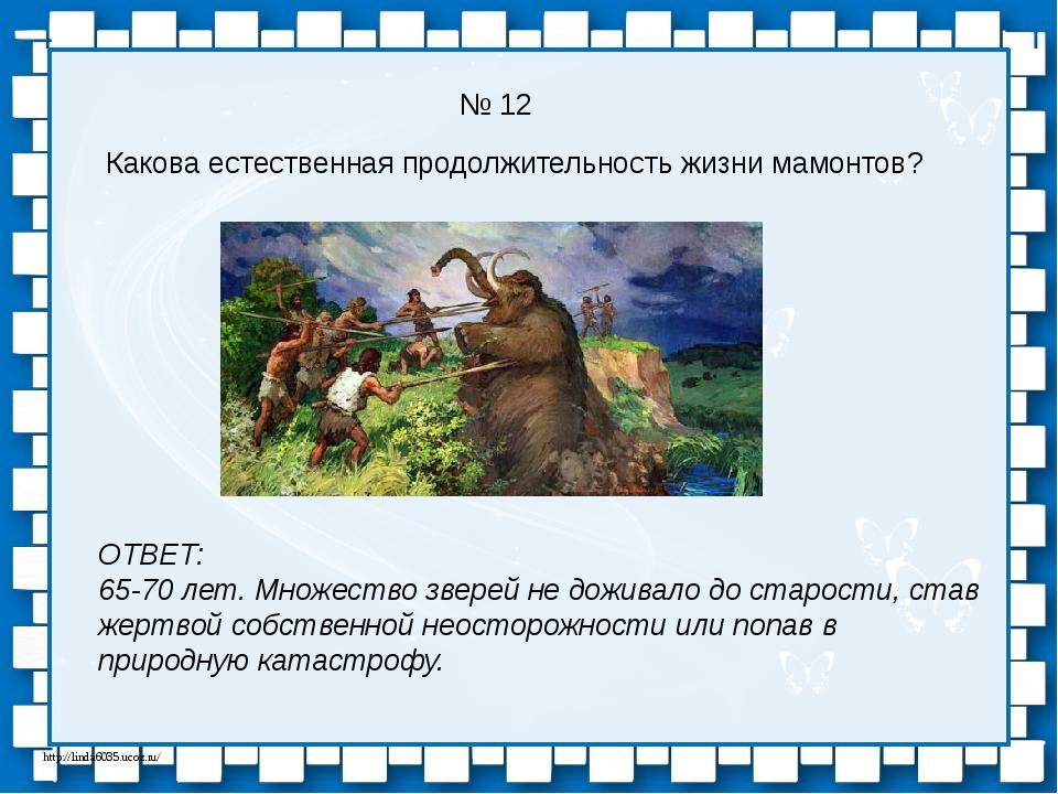 № 12 Какова естественная продолжительность жизни мамонтов? ОТВЕТ: 65-70 лет....