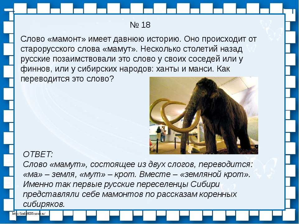 № 18 Слово «мамонт» имеет давнюю историю. Оно происходит от старорусского сло...
