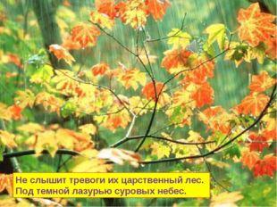 Не слышит тревоги их царственный лес. Под темной лазурью суровых небес.