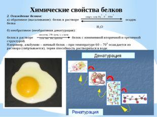 Химические свойства белков
